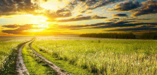 väg solnedgång